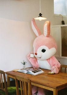 Kigurumi 着ぐるみへの想い : 雑貨とカフェ ロバギター