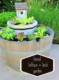 Tiered Lettuce Garden+ Link Party by Centsational Girl Tiered Planter, Tiered Garden, Herb Garden, Vegetable Garden, Garden Art, Garden Design, Garden Junk, Garden Crafts, Wine Barrel Garden
