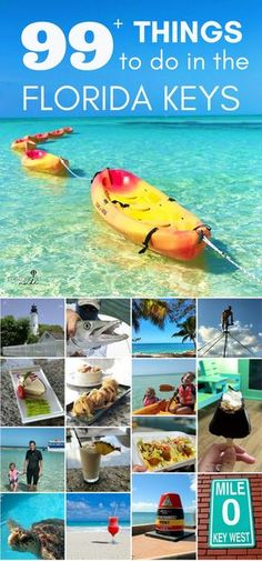 Things to Do and See in Key West and the Florida Keys. Plan your vacation to the Florida Keys travel destination with theses things to do. Visit Florida, Florida Vacation, Florida Travel, Florida Beaches, Travel Usa, Florida Keys Honeymoon, Florida Living, Travel Tips, Budget Travel