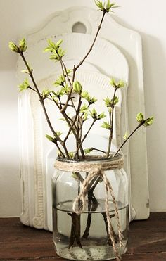 Easter decor from egg carton – hen and Spring & Easter Home DecorSpring Door Decorations .Easter decorations for outdoors – as you… Deco Nature, Deco Floral, Deco Table, Holiday Crafts, Planting Flowers, Floral Arrangements, Glass Vase, Branches, Plants