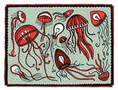 Het nieuwe boek 'Het raadsel van alles wat leeft en de stinksokken van Jos Grootjes uit Driel' van Jan Paul Schutten, met prachtige illustraties van Floor Rieder is een echte aanrader.