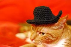 Free Crochet Pattern - Spindles and Spices: Giddyup Kitty Hat!
