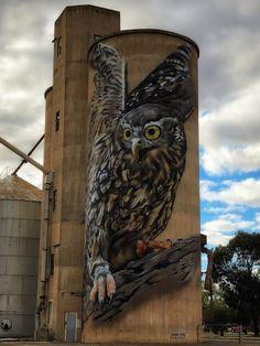 Silo Art Trail - Australia's number one must do road trip - Great Australian Adventure