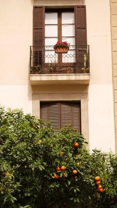 balcony Cast Iron, Balcony, Fence, Gate, Barcelona, Home Decor, Photo Illustration, Terrace, Homemade Home Decor