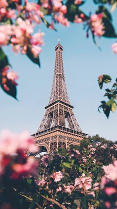 Paris photography and Eiffel tower poster. We offer a wide var. - Paris photography and Eiffel tower poster. We offer a wide var. Paris photography and Eiffel tower poster. Paris Photography, Nature Photography, Eiffel Tower Photography, Digital Photography, Photography Basics, Travel Photography, Photography Backgrounds, Photography Lighting, Horse Photography