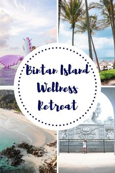 Ever Wondered What It Would Be Like To Attend A Wellness Retreat? Imagine a scenario where That Wellness Retreat Was Geared Towards Families. Peruse Here To Find Out All About The Club Med Bintan Island Wellness Retreat For Families. Amazing Destinations, Travel Destinations, Bintan Island, Holiday In Singapore, Hotels, Summer Travel, Luxury Travel, Family Travel, Traveling By Yourself