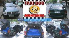 TAXI DOG MONTANHA TRANSPORTE DE ANIMAIS NO RIO DE JANEIRO: Taxi Dog Montanha Transporte de Animais em Todo Br...