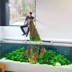 10 Tips on Designing a Freshwater Nature Aquarium Aquarium Landscape, Nature Aquarium, Tropical Aquarium, Planted Aquarium, Fish Aquarium Decorations, Aquarium Ornaments, Betta, Fish Tank Design, Cool Fish Tanks
