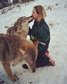 Wolf kiss...Norway!