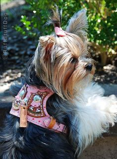 Custom Leather Dog Harness-Western With Bunnies-Pink-Size Tiny thru Med.