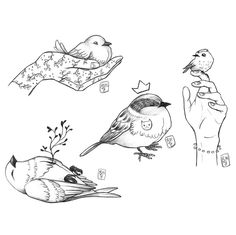 naptár 3013 Set of birds drawn line, vector illustration, winter birds  naptár 3013