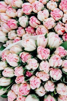 Gorgeous bunches of pink and white tulips at a Parisian flower shop - My Paris Perfect experience - the Viennese Girl