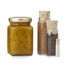 Look what I found at UncommonGoods: Make Your Own Mustard Kit for $14.99
