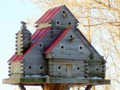 <3 bird condo....