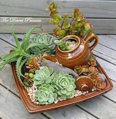 Recicla tus viejas tazas y jarras y úsalas para crear unos bellos mini jardines. Es una forma muy llamativa de lucir aquellos trastes que t... #minijardines