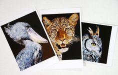 工房kokimoku小泉春樹の絵画作品の中でも人気のある3作品をポストカードにいたしました。3枚セットです。 ・ハシビロコウ ※2008年Birds in A...|ハンドメイド、手作り、手仕事品の通販・販売・購入ならCreema。