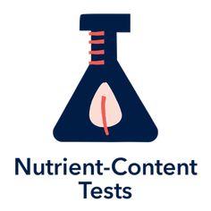 Prenatal Multivitamins – Best Nest Wellness Best Prenatal Vitamins, Baby Growth, Am Pm, Nest, Pregnancy, Wellness, Bird, Nest Box, Birds