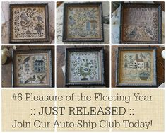 BLACKBiRD DESiGNS Pleasure of the Fleeting Year #6 counted cross-stitch patterns For the Birds Loose Feathers by thecottageneedle