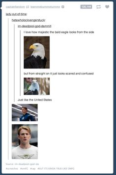 Good Lord that's the perfect description of Steve Rogers. Oh my gosh..my poor heart can't handle this.