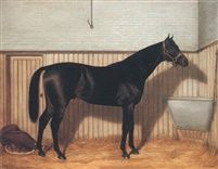 Common a brown racehorse in a stable by Emil Adam