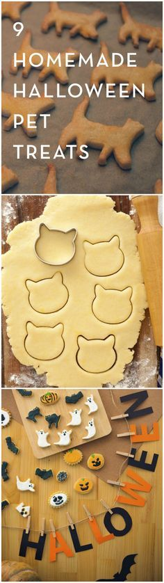 Whether you have cats or dogs, your furry friends will love these DIY Halloween Pet Treats, and your kids will love getting to make them.