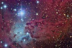 Esta llamativa región de gas y polvo es conocida como la Nebulosa Piel de Zorro, se encuentra a 2.700 años-luz de distancia del Sistema Solar, en la constelación de Monoceros. Foto de Russell Croman. #astronomia #ciencia