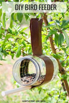 25 Amazing Ideas for Building DIY Bird Feeders For Those Winged Friends!