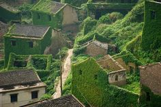 Shengsi, an archipelago of almost 400 islands at the mouth of China's Yangtze river, holds a secret shrouded in time – an abandoned fishing village being reclaimed by nature. These photos by Tang Yuhong, a creative photographer based in Nanning, take us into this lost village on Goqui island.