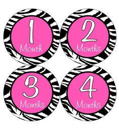 Baby Month Stickers Baby Girl Monthly Onesie Hot Pink Zebra by getthepartystarted, $12.00 more baby shower gift ideas at  http://www.etsy.com/shop/getthepartystarted?section_id=6771147