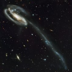 """UGC 10214, the """"Tadpole"""" galaxy, possesses a shape radically different than other spiral galaxies, pulled wildly out of shape by the very blue, compact galaxy seen at upper left. The Tadpole lies about 420 million light-years away in the constellation of Draco.  Credit: NASA, H. Ford (JHU), G. Illingworth (UCSC/LO), M.Clampin (STScI), G. Hartig (STScI), the ACS Science Team, and ES"""