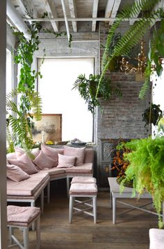 Bellocq Tea Atelier | Brooklyn, NY