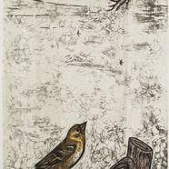 Aire y pájaro