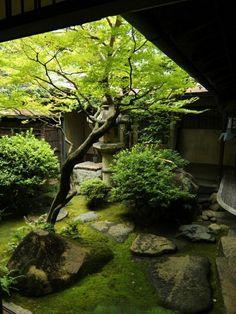 Japonská zahrada naturale krása most keře stromy jezero Amey asijských