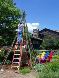 Creating a bean pole teepee is easier than it sounds. Any vine or climbing plant…