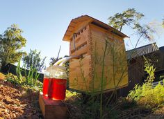 This ingenious beehive extracts honey on tap without disturbing the bees.
