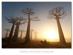 Madagascar #JetsetterCurator