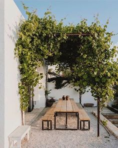 It only took a couple of years for the grapes to cover the pergola. My first project Photo by .… Pergola Design Ideas that are quite interesting and suitable for outdoor areas in your home. Pergola Patio, Backyard Patio, Modern Pergola, Metal Pergola, Pergola Plans, Patio Awnings, Pergola Carport, Gravel Patio, Small Pergola