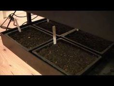 Using Grow Lights to ensure rapid, healthy growth of your seedlings indoors. After you watch this video, why not try our Garden Planner for free: gardenplanner.almanac.com