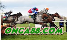Bangor on Dee horse racing ~ National Hunt Awesome thoughts! Checkout this awesome horse race betting system: horseracingmegasi. Free Horse Racing Tips, Horse Racing Betting Tips, Free Horses, Two Horses, Horse Racing Results, Fabre, Grand National, Leicester, Awesome Thoughts