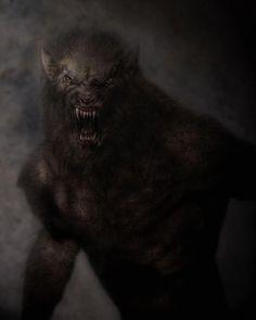 Creature Spot - The Spot for Creature Art, Artists and Fans - Hairy Werewolf Bark At The Moon, Howl At The Moon, Fantasy Creatures, Mythical Creatures, Dark Fantasy, Fantasy Art, Of Wolf And Man, Wolf Hybrid, Werewolf Art