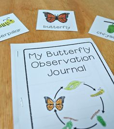 Butterfly observation journal where kids can record what they notice about the changing butterfly, and vocabulary cards to help with their writing! {From the Life Cycles Unit Bundle for PreK, K, or 1st}