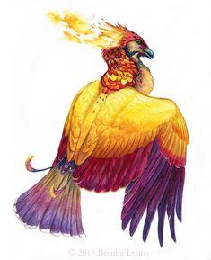 Phoenix page Illustration par Brenda Lyons - Falcon Lune studio