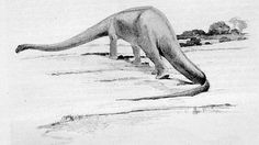 Prehistoric Age, Prehistoric Animals, Diorama, Vida Natural, Knight, Old Things, Elephant, Dinosaurs, Life