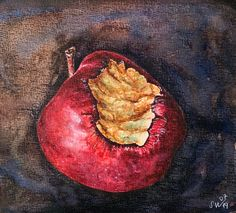 Excited to share this item from my shop: Apple watercolor painting,red apple,kitchen art,watercolor still life Watercolor Eyes, Watercolor Paintings, Original Paintings, Apple Painting, Baby Painting, Decay Art, Seed Art, Growth And Decay, Observational Drawing