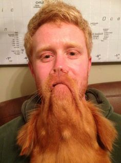 39 Perfectly Timed Photos Of Man's Best Friend That Are Doggone Funny (Slide - Pawsome Dog Bearding, Bad Beards, Long Lost Love, Cool Optical Illusions, Perfectly Timed Photos, Man And Dog, Face Men, Mind Tricks, Brain Teasers