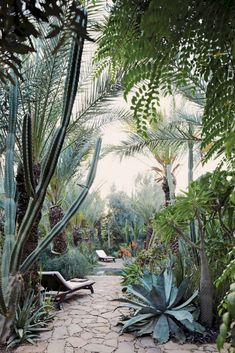 Beautiful Desert Garden Design Ideas 11