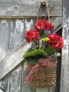 Basket of geraniums
