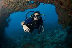 swimming through - cable reef
