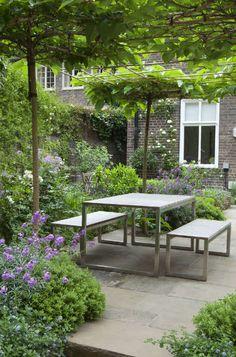 Opstammede og styltede træer opdeler din have i smukke rum
