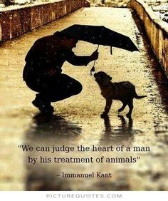 We can judge the heart of a man by his treatment of animals. Picture Quotes.